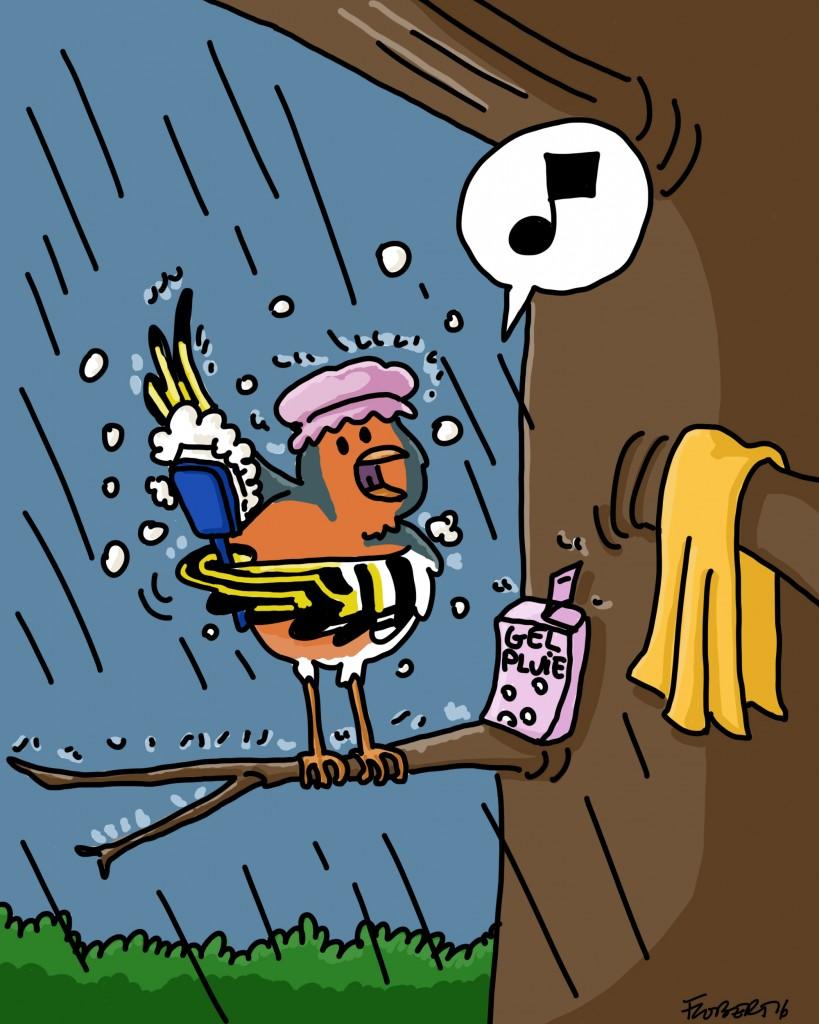 oiseaudouchepluie